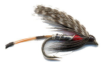 Troutfly
